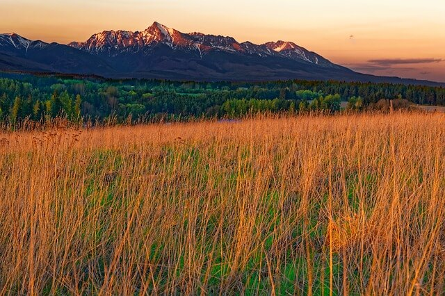 Krywań w Tatrach