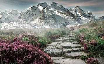 Góry - Stary Smokowiec